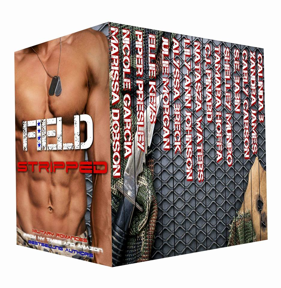 Field stripped cover
