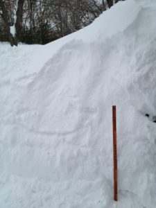 snow 4 001