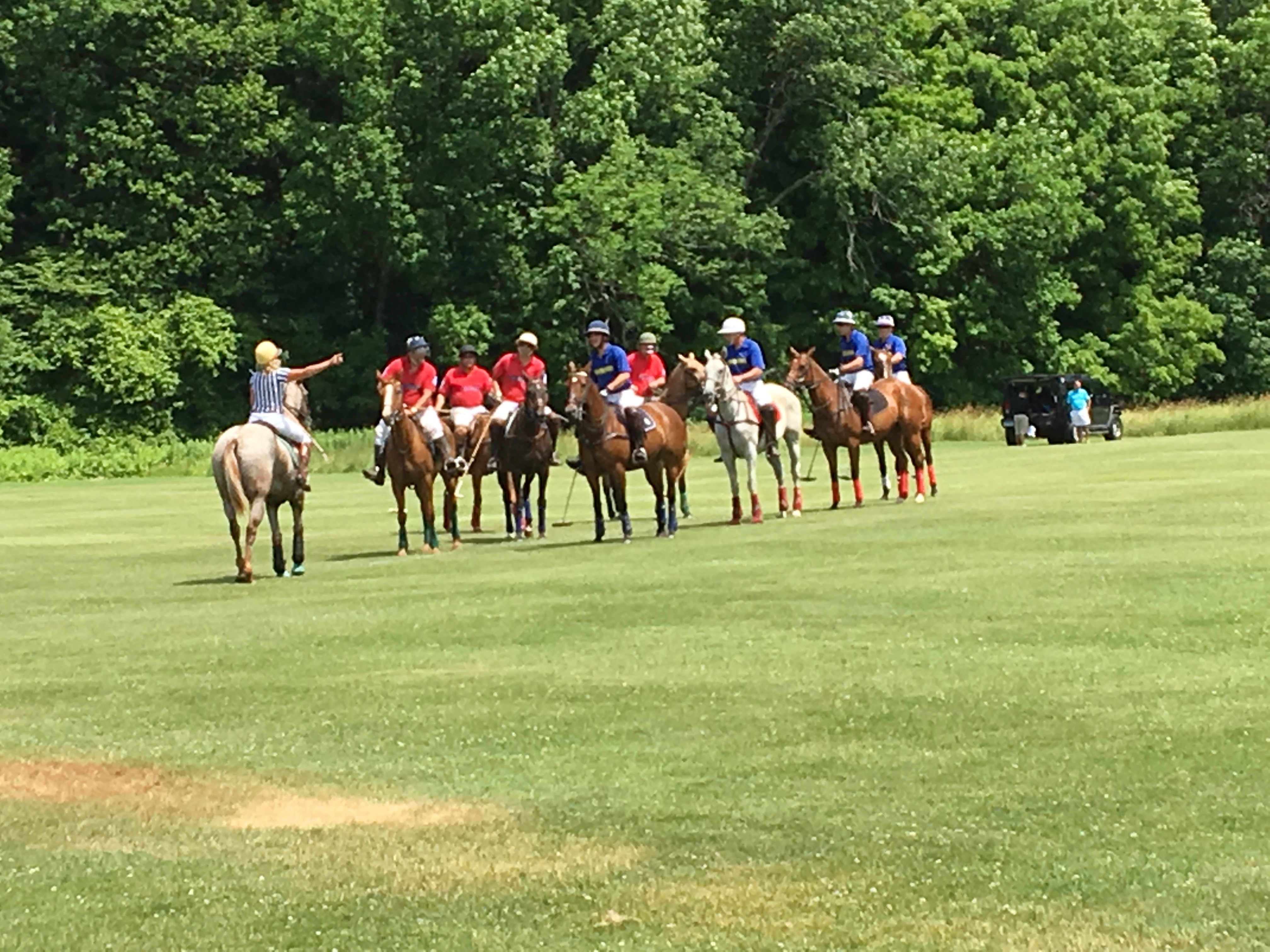Polo opening